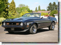 Ford_Mustang_Convertible_1972_302
