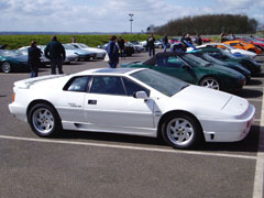 Lotus_Esprit_Turbo_SE_White